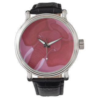 Crimson Elephant Watch