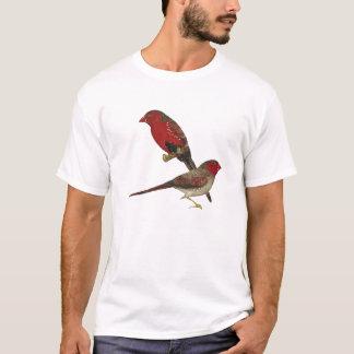 Crimson Finch (black-bellied) Pair T-Shirt