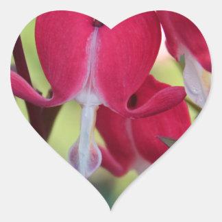 Crimson Jubilation Heart Sticker