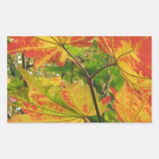 Crimson Leaves Rectangular Sticker