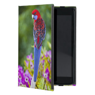 Crimson Rosella & backdrop of orchids Lamington Case For iPad Mini