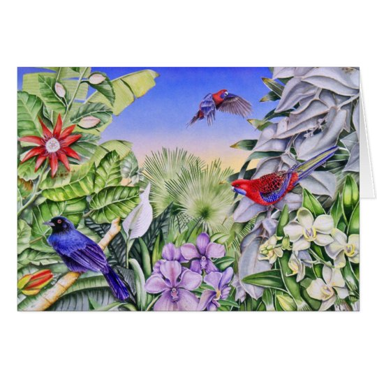 crimson rosellas card