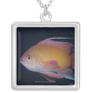 Crimson Seabream Silver Plated Necklace