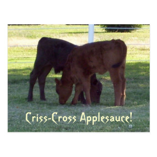 Criss-Cross Applesauce! Calves Postcard