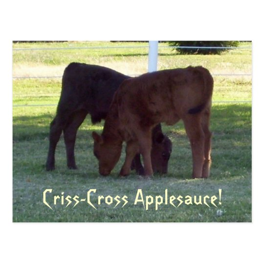 Criss-Cross Applesauce! Calves Postcard