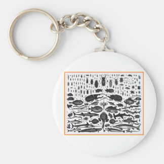 Critters Basic Round Button Key Ring