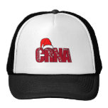 CRNA Certified Registered Nurse Anaesthetist SANTA