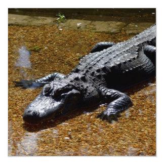 Crocodile 13 Cm X 13 Cm Square Invitation Card