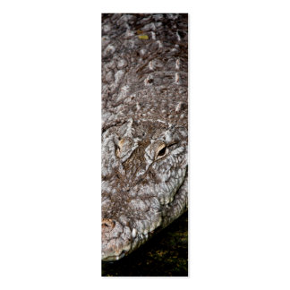 Crocodile Pack Of Skinny Business Cards