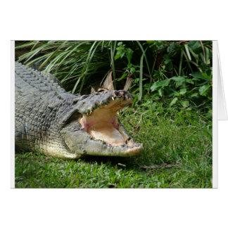 Crocodile Card