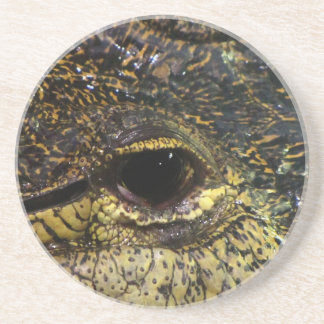 Crocodile Eye Coaster