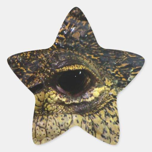 Crocodile Eye Star Sticker