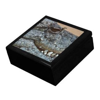 Crocodile Jewelry Box
