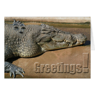 Crocodile Greetings Card