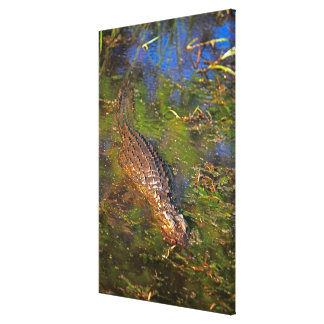 Crocodile in Water Canvas Print