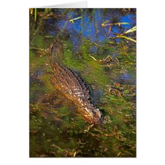Crocodile in Water Card