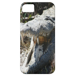 Crocodile iPhone 5 cover