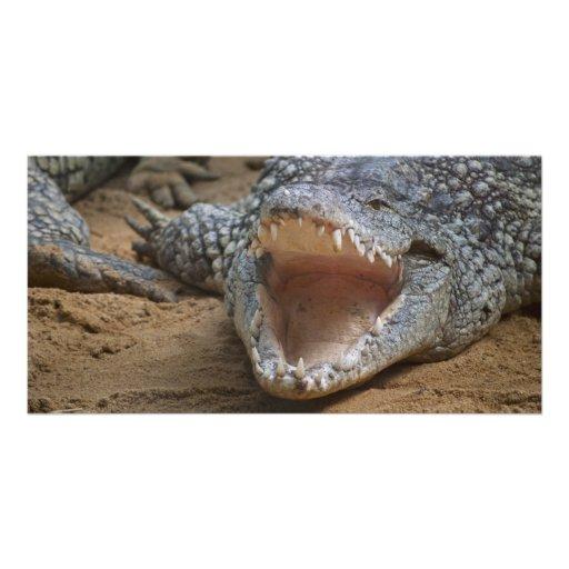 Crocodile Personalized Photo Card
