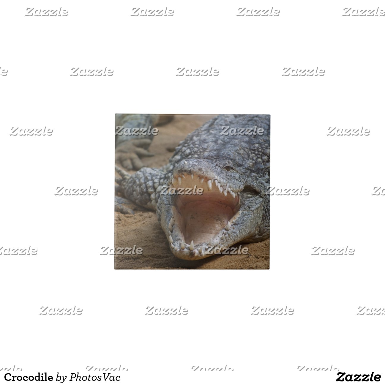 Crocodile Tiles Zazzle