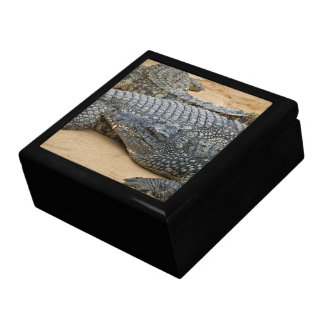 Crocodiles Jewelry Box