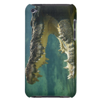 Crocodiles open mouth iPod touch cases