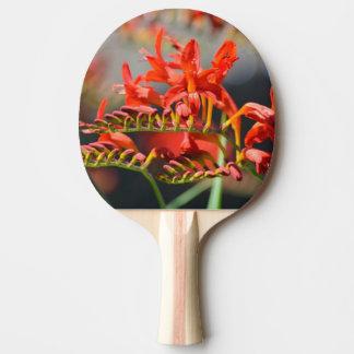 Crocosmia Flowers Ping Pong Paddle