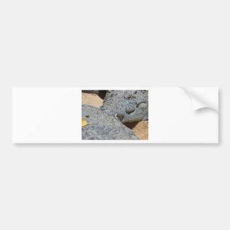 crocs bumper sticker