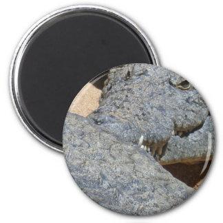 crocs magnet