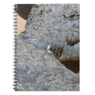 crocs notebook