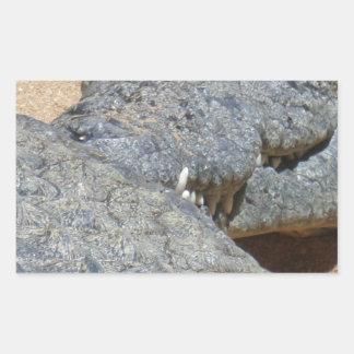 crocs rectangular sticker