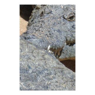 crocs stationery