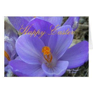 Crocus Easter Card