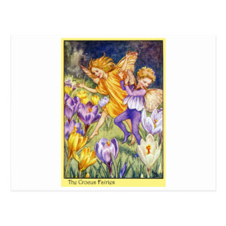 Crocus Fairy Postcard