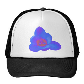 Crocus Flower Hot and Cold Hat