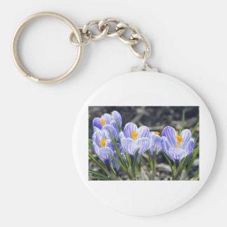 Crocus Flowers Basic Round Button Key Ring
