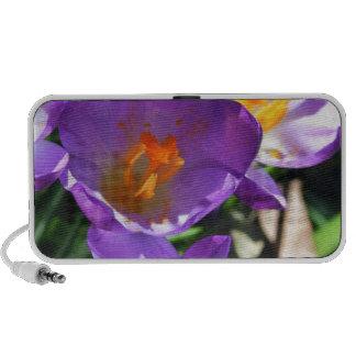 Crocus flowers jpg notebook speaker