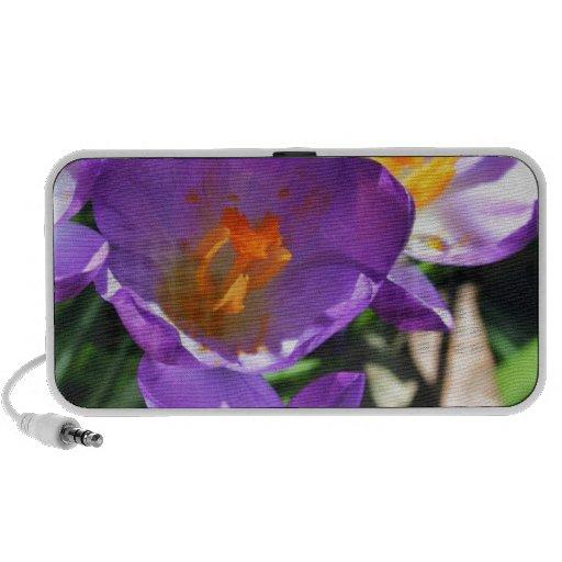 Crocus flowers.jpg notebook speaker