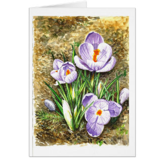 Crocus in Spring Card