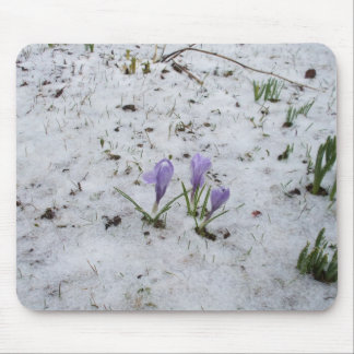 Crocuses in Snow Mouse Mat