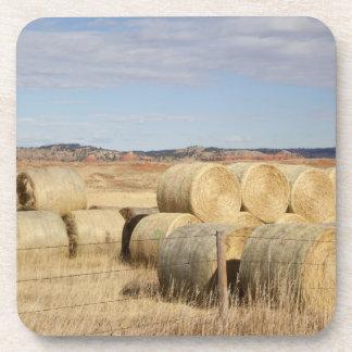 Crook County, Hay Bales 2 Coaster