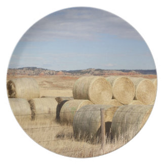 Crook County, Hay Bales 2 Plate