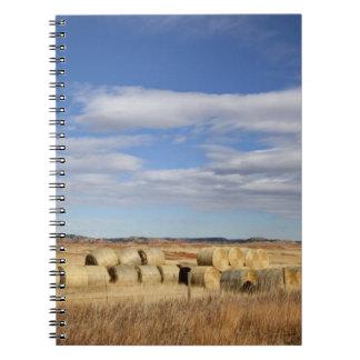 Crook County, Hay Bales Notebook
