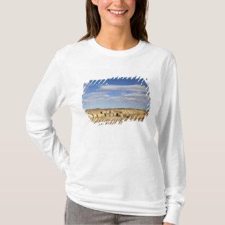 Crook County, Hay Bales T-Shirt
