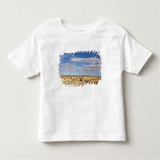 Crook County, Hay Bales Toddler T-Shirt