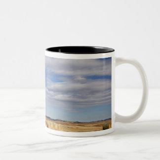Crook County, Hay Bales Two-Tone Coffee Mug