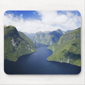 Crooked Arm, Malaspina Reach, Doubtful Sound, Mouse Mat