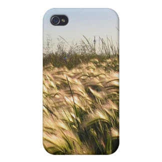 Crops iPhone 4/4S Case