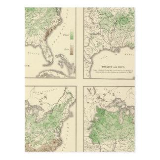 Crops, Statistical US Lithograph Postcard