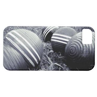 Croquet Balls - Monotone Case For The iPhone 5