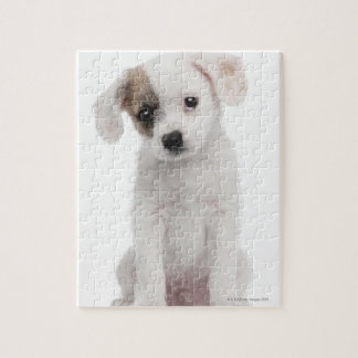 Cross breed puppy (2 months old) jigsaw puzzle